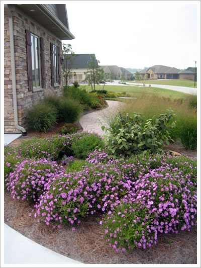 Landscaping desing by Tailored Landscapes